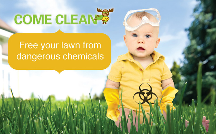 Spring Cleanup: An Opportunity to Spring Ahead with Organic Lawn Care