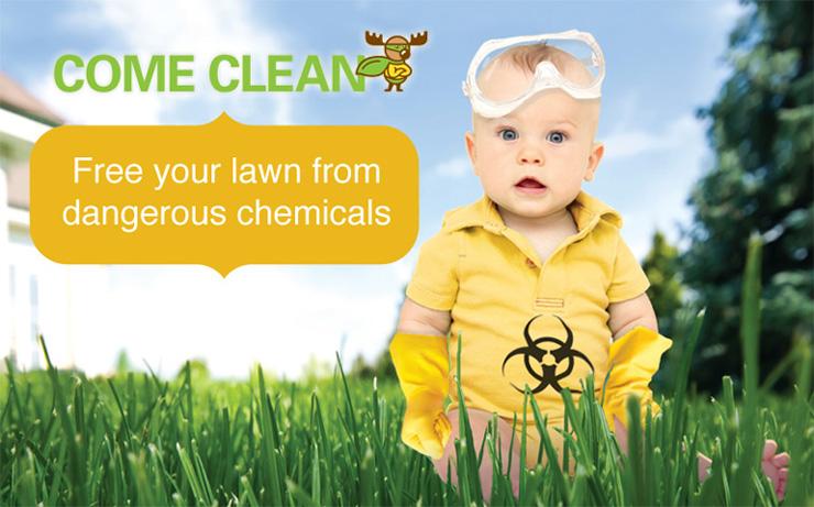 Organic Lawn Treatment Program - Organic Fertilizer