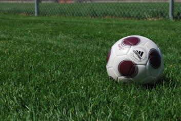 soccer ball on organic grass