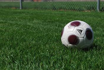 soccer ball on organic grass
