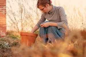 Planting Tips For Native and Adaptive Plants In The Fall