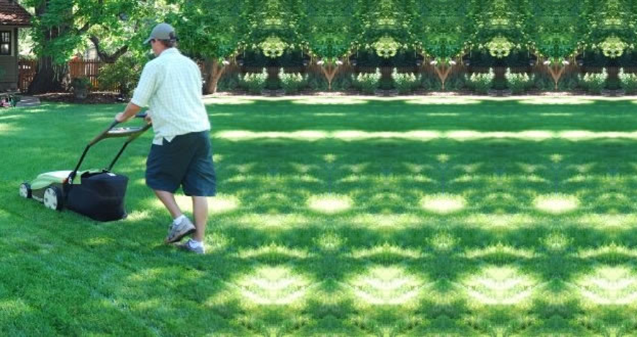 Why an Electric Lawn Mower is the Smarter Choice for Lawn Care