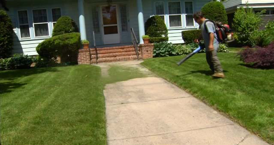 Doctor raises concerns about leaf blowers