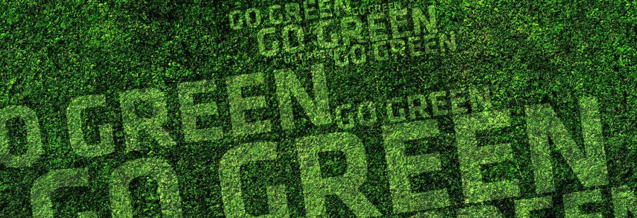 Top 5 Benefits of Owning a Green Franchise