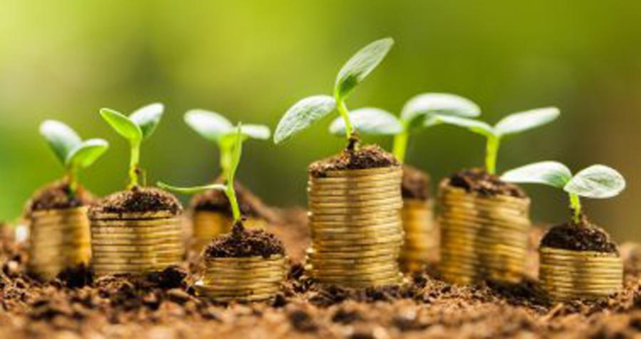 What is Green Entrepreneurship?