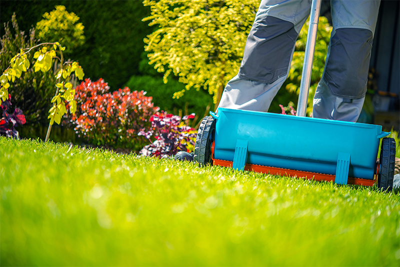 Implementing a natural and organic diet for your lawn