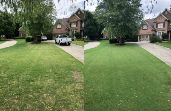 Before and after Louisville lawn care