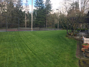 Beaverton lawn care