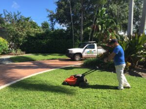 mowing organic lawn