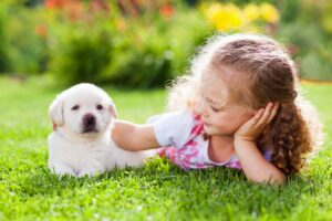 puppy and kid on organic lawn