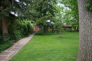 Colorado springs lawn care