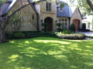 lawn care Houston