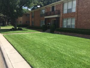 Richardson lawn care service