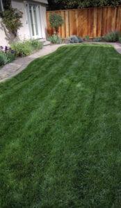 san jose lawn and garden