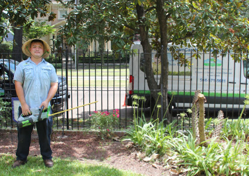 All electric lawn care service