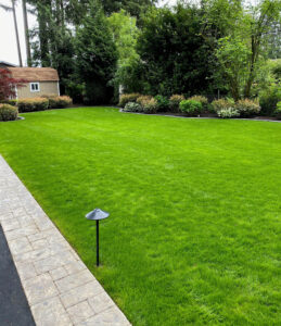 all electric lawn care