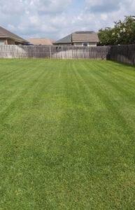 Dothan lawn care