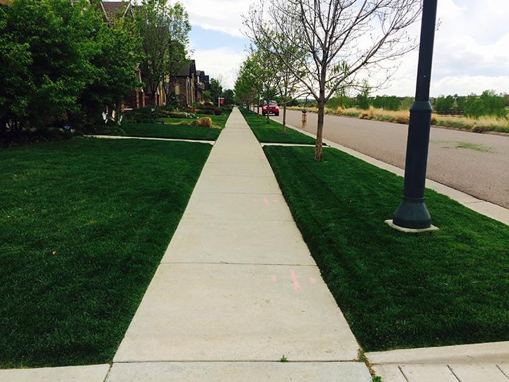 Denver Lawn Care