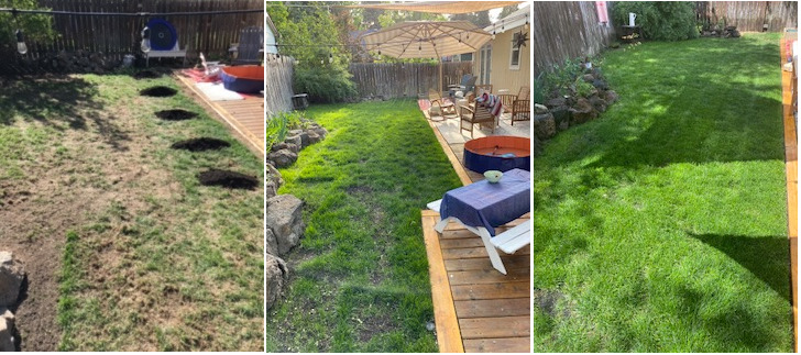 Bend lawn care