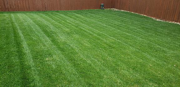 lawn mowing Marietta
